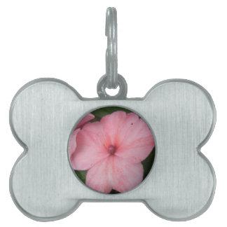 Pale Pink Impatiens Flower Pet Tag