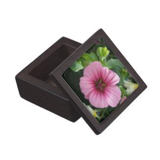 Pale Pink Lavatera Premium Trinket Boxes