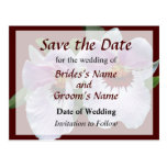 Pale Pink Orchid Save the Date Post Cards