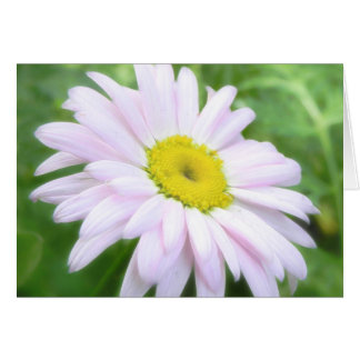 Pale Pink Painted Daisy Card