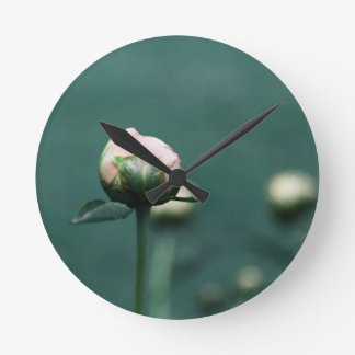 Pale Pink Peony on Teal Blue Green Round Clock