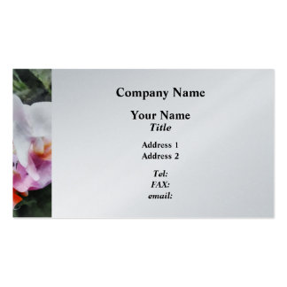 Pale Pink Phalaenopsis Orchids Business Cards