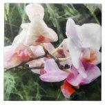 Pale Pink Phalaenopsis Orchids Ceramic Tiles