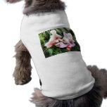 Pale Pink Phalaenopsis Orchids Pet Shirt