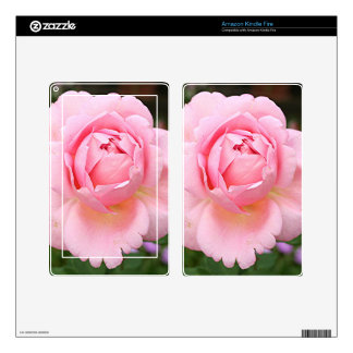 Pale pink rose flower in bloom in garden skins for kindle fire