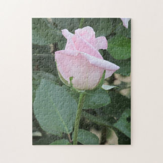 Pale Pink Rose Puzzle