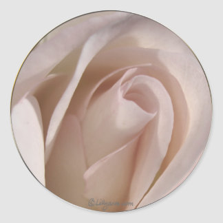 Pale Pink Rose Wedding Invitation Seal Classic Round Sticker