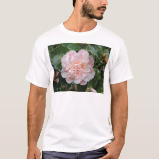 Pale pink striped camellia T-Shirt