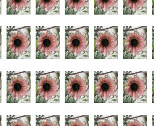 cdc37d00e46c6 The Sunflower Temporary Tattoos | Zazzle