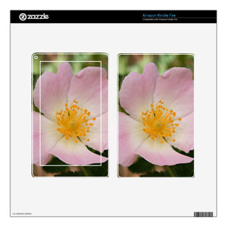 Pale pink & white single rose flower in bloom skins for kindle fire