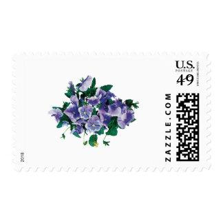 Pale Purple Pansies Postage