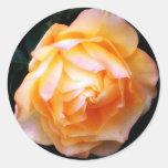 'Pale Rose'  Envelope Seals Sticker