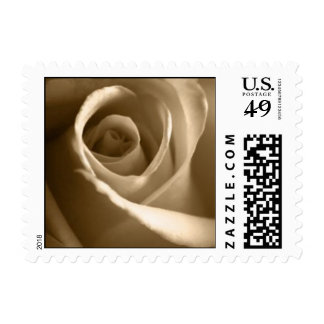 Pale Rose Wedding Postage Stamp