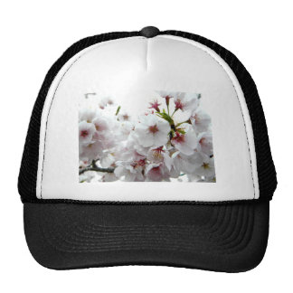 Pale Spring Hats