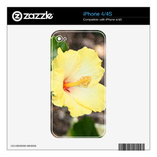 Pale yellow hibiscus flower 2 skin for the iPhone 4