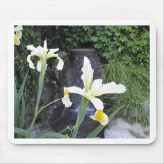 Pale Yellow Irises Mouse Pad