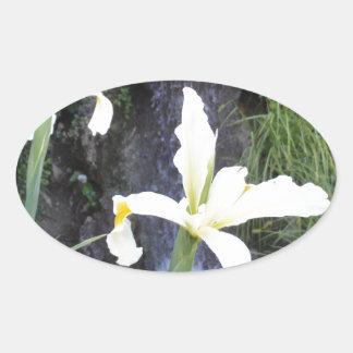 Pale Yellow Irises Oval Sticker