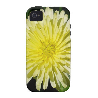 Pale Yellow Mary Bud Marigold With Garden Backgrou iPhone 4 Cover