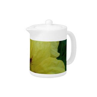 Pale Yellow Nasturtium Duo Teapot