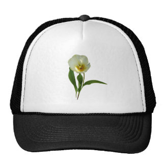 Pale Yellow Tulip Trucker Hat