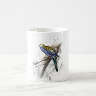 Paleheaded Parrakeet by Edward Lear Coffee Mug