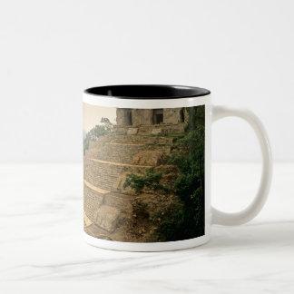 Palenque, Chiapas, Mexico, Maya Mugs