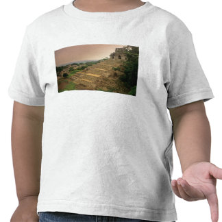 Palenque, Chiapas, México, maya Camisetas