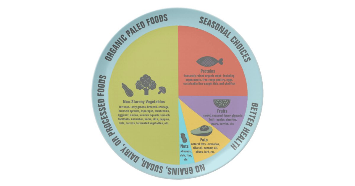 portion control plates paleo diet healthy portion plate zazzle 13085