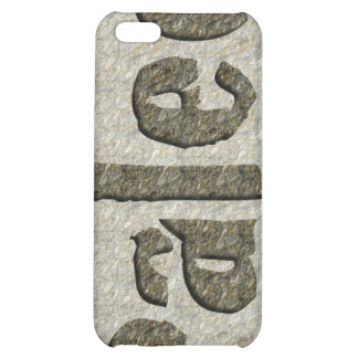 Paleo in Stone iPhone 5C Covers