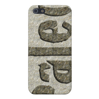 Paleo in Stone iPhone 5 Covers