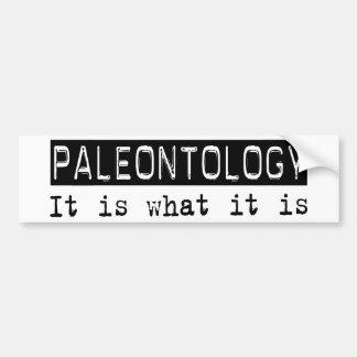 Paleontology It Is Bumper Sticker