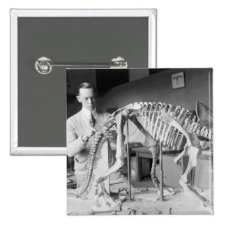 Paleontology Scientist Baby Dinosaur Vintage Button