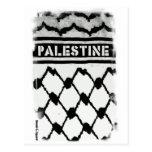 Palestina Keffiyah Postales
