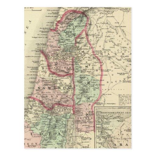 Palestine 4 postcard