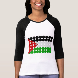 Palestine Flag Circles T Shirt