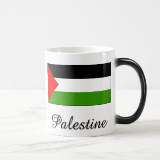 Palestine Flag Design Magic Mug