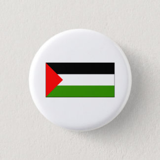 Palestine FLAG International Pinback Button