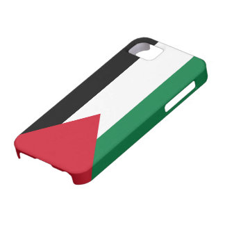 Palestine Flag iPhone SE/5/5s Case