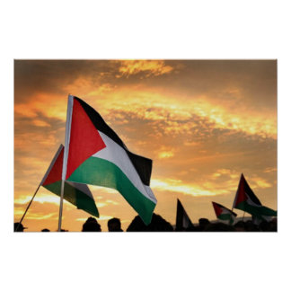 Palestine Flag View Posters