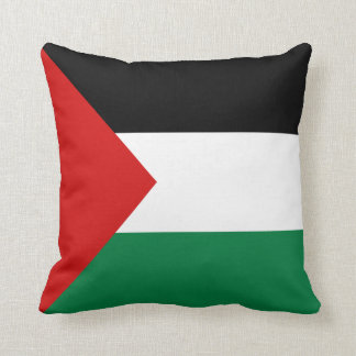 Palestine Flag x Flag Pillow