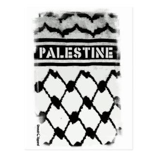 Palestine Keffiyah Postcard