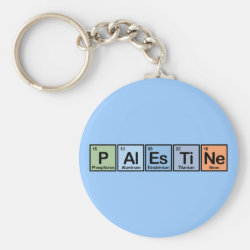 Basic Button Keychain with Palestine design