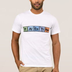 Men's Basic American Apparel T-Shirt with Palestine design