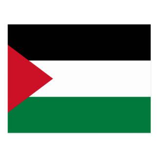 Palestine, Palau flag Postcard