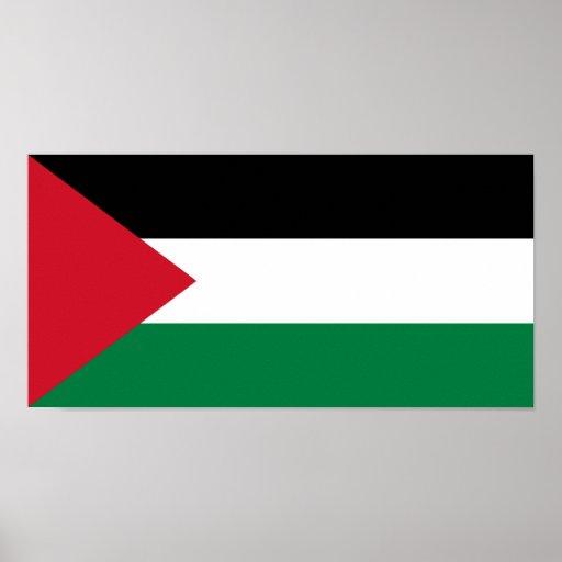 Palestine, Palau flag Poster