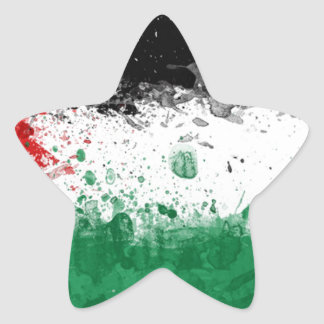 palestinian flag star sticker