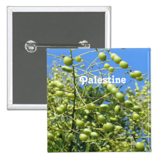 Palestinian Territory Olives Pins