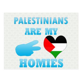 Palestinians are my Homies Postcard