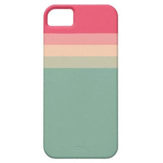 Paleta de colores funda para iPhone SE/5/5s