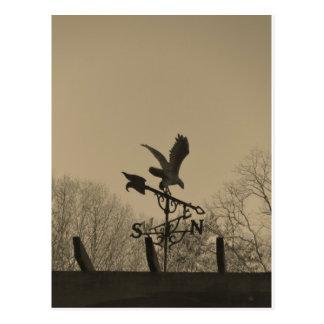 Paleta de tiempo de Eagle del tono de la sepia Postales